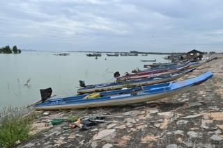 Tây Ninh thu hút đầu tư lĩnh vực thuỷ sản