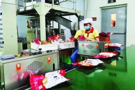 Doanh nghiệp tích cực chuẩn bị phục hồi sản xuất