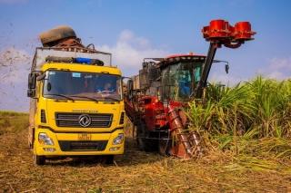 Vượt khó khăn, bảo đảm tiến độ xây dựng nông thôn mới