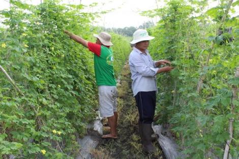 Kỳ cuối: tạo điều kiện thuận lợi cho sản xuất nông nghiệp phát triển