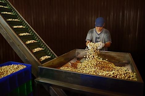 Doanh nhân Tây Ninh: Nỗ lực vượt khó, duy trì - khôi phục hoạt động sản xuất