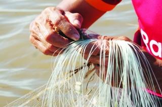Mưu sinh mùa nước nổi