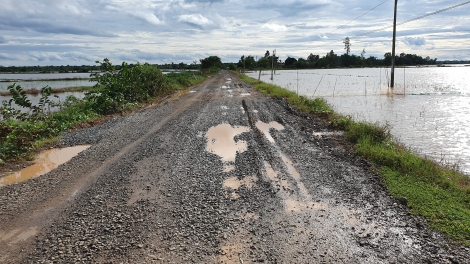 Châu Thành: Cần đầu tư nâng cấp đồng bộ Đường huyện 5 và cầu Bến Cây Ổi