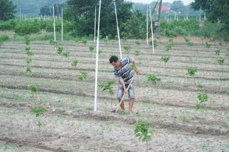 Người dân đóng góp nhiều ý kiến về kế hoạch sử dụng đất đai năm 2021-2030